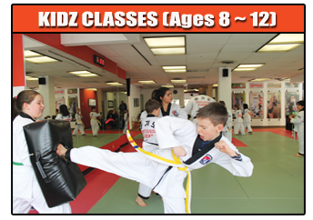 kids martial arts yonge eglinton