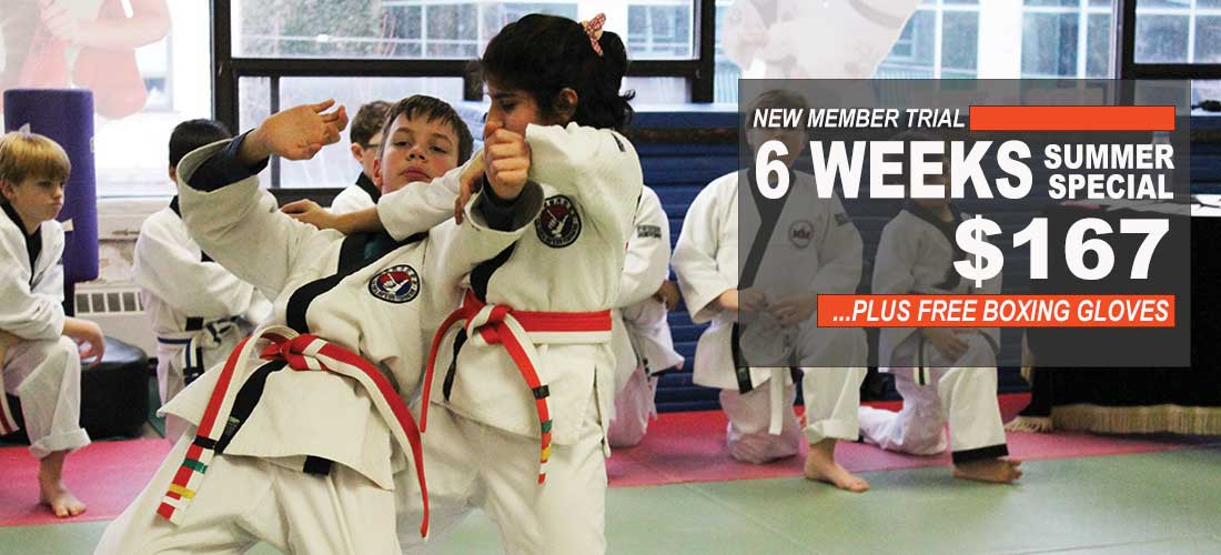 childrens jiu jitsu north york