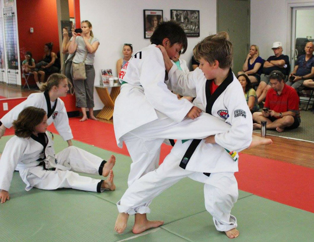 martial arts north york