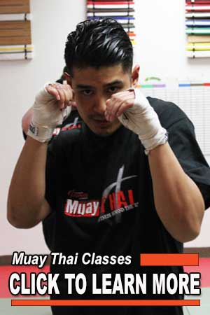 muay thai gym north york toronto