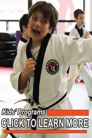 kids martial arts toronto north york