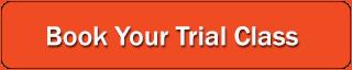 toronto martial arts trial class