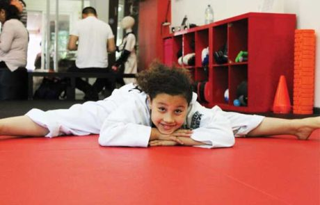 children's martial arts north york