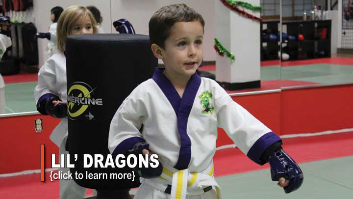 kids karate toronto north york
