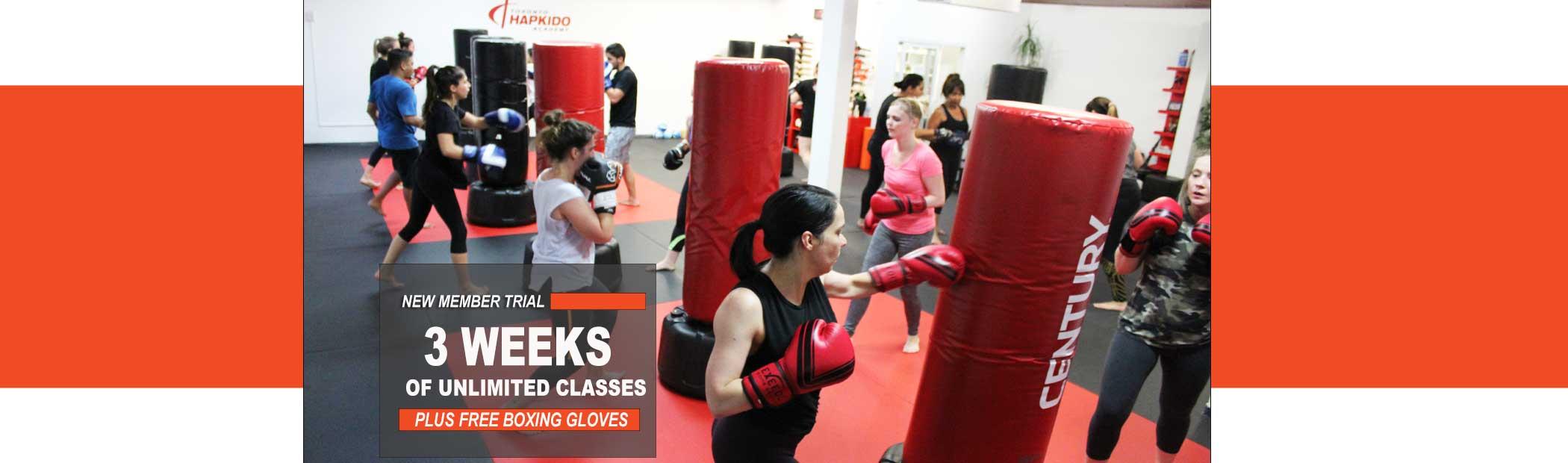 kickboxing north york school