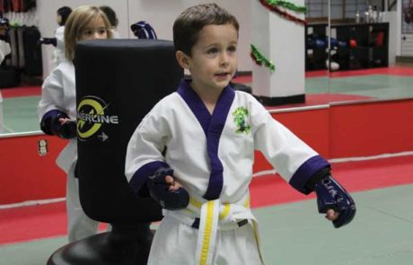 karate classes north york