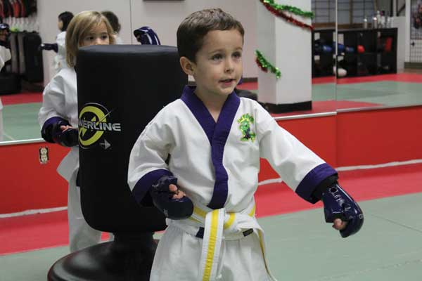 karate classes north york