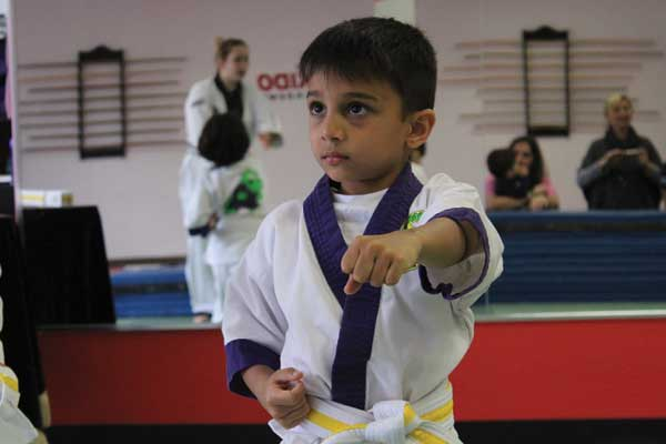 kids taekwondo toronto