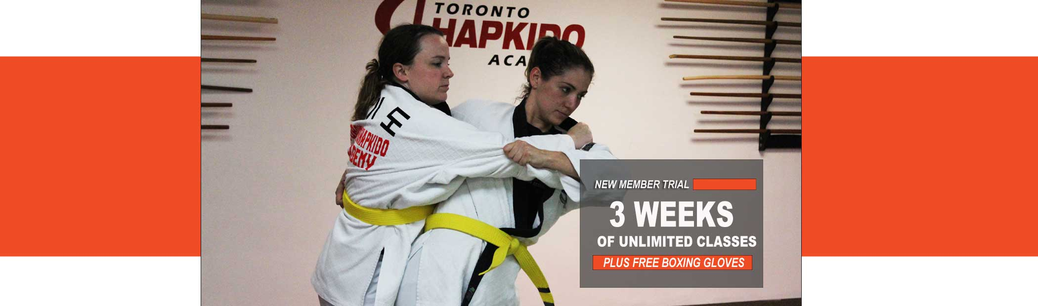 toronto self defense school