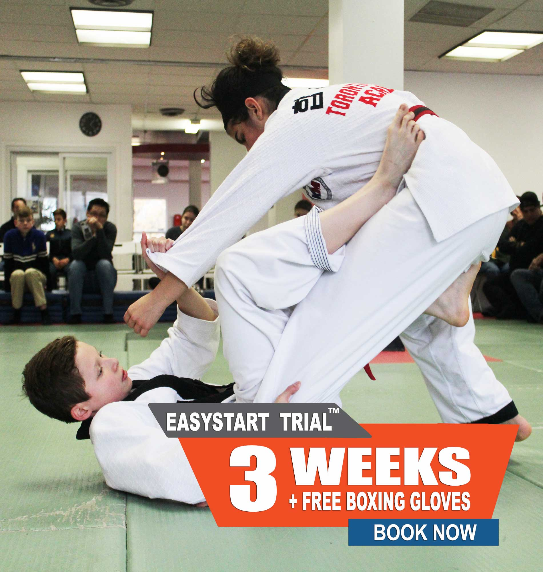jiu-jitsu north york